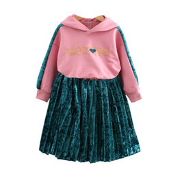 669a5964e7 DFXD Toddler Girl Clothes 2018 Autumn Korean Baby Girl Long Sleeve Cartoon  Ear Hooded Sweatshirt+Bright Celvet Pleated Skirt 2pc