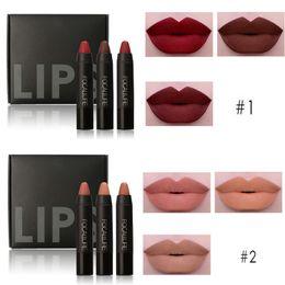 2019 вице-палитра Brand Sexy Nude Red Lipstick Cosmetics Waterproof  Batom Lips Matte Pencils Kits 3Pcs Focallure Matte Lipstick  Sets
