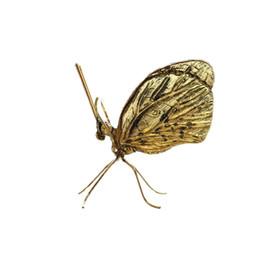 Canada Importations indiennes d'ornements de papillons en or et en argent pour enfants anciens complexes Offre