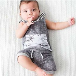 Wholesale Boys Dinosaur Hoodies - 2018 Newborn Baby Boy Clothes Set Dinosaur Gray Boys Clothing Summer Hoodies Tops Long Pants Costume Cotton Outfit 2PCs