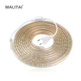 Wholesale led strip 6m - AC 220V Silicone Tube Waterproof 5050 SMD LED Strip light Tape 1M 2M 3M 4M 5M 6M 7M 8M 9M 10M 15M 20M 60LEDs M + EU Power Plug