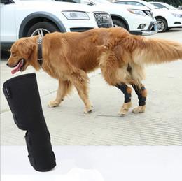 1 Paar Hund Haustier Kniepolster Knie Unterstützung Chirurgische Wiederherstellung Schutzgelenk Feste Hundebeine Protektoren von Fabrikanten