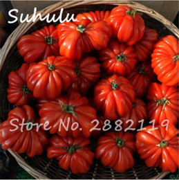 Wholesale tomato seeds wholesale - 200 pcs beef hybrid rare red tomato seeds, Extra-meaty, Extra-tasty tomato organic food seeds sweet fruit and vegetables bonsai