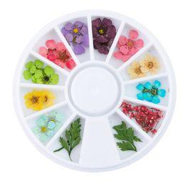flower pressing 2018 - Mixed Natural Nail Dried Flower DIY 3D Pressed Blossom Flower Leaf Slider Sticker Polish Nail Art Decorations 24pcs Wheel