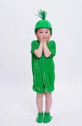 2018 новый стиль дети косплей зеленая трава яблоко ананас одежда мальчики и девочки танец сиамские одежда от