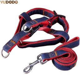 Wholesale Leash Walking Training - 4 Size Dog Leashes Adjustable Denim Pet Harness Set Lead Leash Training Walking Belt For Small Medium Puppy Dogs Cats