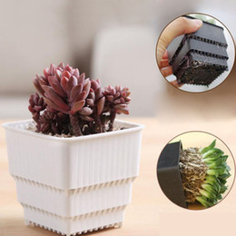 Wholesale Plastic Bonsai Pots - Simple Plant Pots Home Office Flowers Potted Flowers And Green Landscape Bonsai Balcony Nursery Pots Container ZA5858