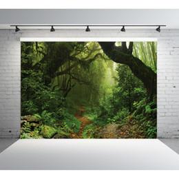 Фэнтезийные тканевые фоны онлайн-7X5ft камеры фоны виниловые ткани фотографии фоны Фэнтези лес дети детские фон для фотостудии 11039
