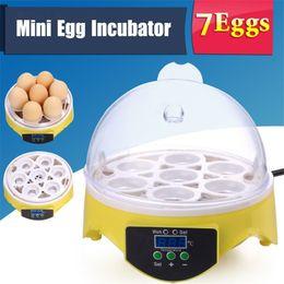 Wholesale Incubator Digital - Mini 7 Egg Incubator Poultry Incubator Brooder Digital Temperature Hatchery Machine Hatcher for Chicken Duck Bird Pigeon