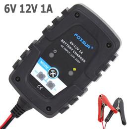 Argentina FOXSUR 6V 12V 1A Auto Moto Cargador de batería inteligente automático para AGM GEL VRLA Cargador de batería Suministro