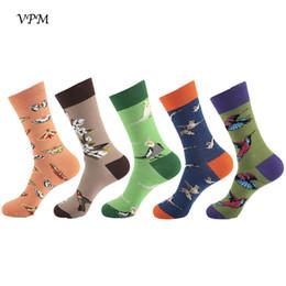 chaussettes à papillon en gros Promotion 5 paires / lot coton peigné chaussettes pour hommes coloré drôle perroquet chaud papillon Harajuku robe longue chaussette cadeau de mariage de Noël