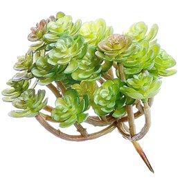 Piante artificiali succulente all'ingrosso online-vendita calda falsi Succulente Grandi Succulente artificiali e cactus piante ornamenti per Piante della decorazione della parete fai da te Materiali all'ingrosso