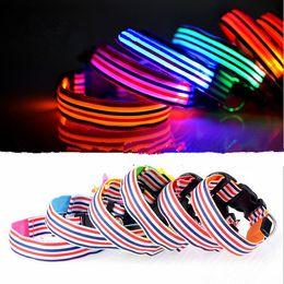 Wholesale Luminous Dog Harness - Specials! ! ! CWYP-26 luminous small pet traction dog collar, S, M, L, XL LED light-emitting collars, dog harness, pet shop