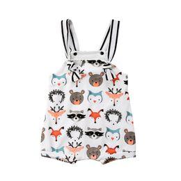 0f6eca70cc363 Promotion Vêtements De Pingouin Bébé