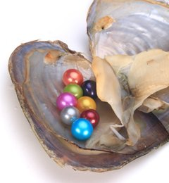 Wholesale Pearl Parts - 2018 Wholesale Fine Jewelry Freshwater Cultured Love Wish Pearl Oyster AAAA Round Pearls Shining Meaningful Color, Birthday Gifts Pearl Part