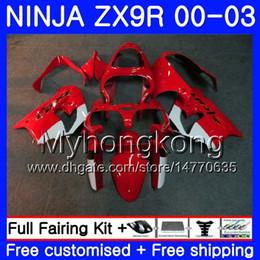 2019 rs carenado Cuerpo para KAWASAKI NINJA ZX 900 9 R ZX 9R 2000 2001 2002 2003 216HM.42 ZX900 fábrica rojo vivo ZX-9R 900CC ZX9 R ZX9R 00 01 02 03 Kit de carenados rs carenado baratos