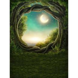 травяной пол Скидка Лес арочные двери сказка фон для фотографии ствол дерева зеленая трава пол полумесяц звезды ночь живописные фотостудия фон