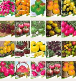 Pomodori biologici online-New rainbow tomato seeds, rare tomato seeds, bonsai organic vegetable & fruit seeds,potted plant for home &garden I185