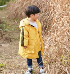 Chaquetas coreanas online-Chaqueta de abajo para niños, sección larga de invierno 2018, nueva versión coreana de la chaqueta de desgaste para niños.