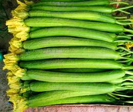 2019 semi di zucca Trasporto libero 20 grande luffa spugna zucca semi di verdure luffa sfilata pianta vistosa, sapone fatto in casa, cortile gustoso semi di zucca economici