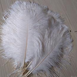Penas de avestruz para casamentos on-line-cariel Pena de avestruz Plume Branco 14-16 polegadas (35-40 cm) Decoração de casamento Centros de mesa Fontes do evento de festa suprimentos festivos casamentos deco