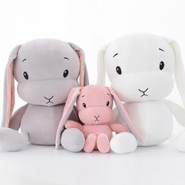 2019 ciao bambola di peluche del gattino Nuovo giocattolo di peluche INS di stile nordico LUCKY rosa carino bambola di stoffa di coniglio elasticizzato bambola bambini doni bambola dorme