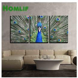 Tela floral on-line-Venda Por Atacado 5d diamante bordado diy diamante pintura animal pavão tela aberta pintura diamante ponto cruz strass mosaico daimond