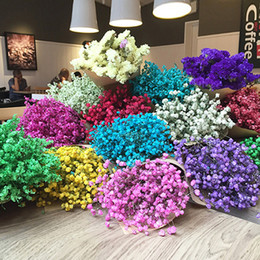 Wholesale green preserves - artificial babysbreath dried flower preserved fresh flower Valentine's Day Creative Gifts artificial flower