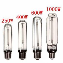natrium-glühbirnen Rabatt Wachsen Sie helle HPS-Lampe E40 250W / 400W / 600W / 1000W Hochdrucknatriumblumenzwiebel-Blumen-Gemüse-Anlage wachsen Lampe für Ballast