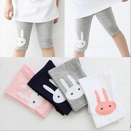 baby rüsche blüht rosa Rabatt 2-7years Kaninchen Footless Girls Cropped Kleidung Kinder Leggings