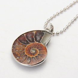 Wholesale Fossil Silver Necklace - Ammonite Fossils Necklace Silver Ammonite Swirl Necklace Snail Amonite Jewelry Fossils Jewelry Bohemian