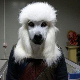 2019 novedades de bolos Máscara de carnaval animal de Halloween de cabeza de perro de cabeza completa ecológica de 2018 ventas superiores 2018