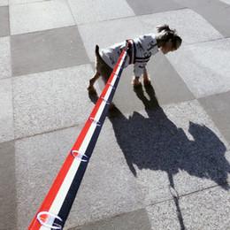 Deutschland Hundehalsband Blinker Geschirre Hundeleinen Fashion Tide Marke Teddy Schnauzer Haustier Katze Einstellbare Strap Weste Kragen cheap straps dogs Versorgung