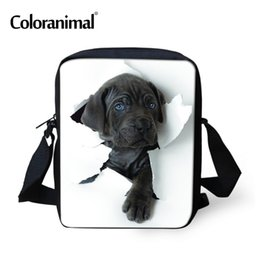 borse a tracolla sveglie piccole Sconti Coloranimal Shoulder Messenegr Bag for Men Borsa tote portatile per donna piccola 3D Cute Animal Dog Print Sacchetti per cross-bady per ragazza adolescente