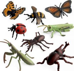 Juguetes de insectos para niños online-8 estilos de simulación Modelos de insectos Granja paisaje PVC saltamontes Mantis mariposa mariquita ciervo escarabajo Figura de Acción Insectos niños Juguetes FFA1187