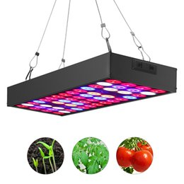 Wholesale Indoor Growing Lighting - JCBritw 36W Plant LED Grow Light Full Spectrum for Indoor Plants Hydroponic Greenhouse Veg and Flower