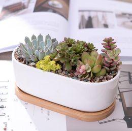 vasi da giardino di approvvigionamento all'ingrosso Sconti 1 Set Minimalista in ceramica bianca succulente Vaso di fiori in porcellana Fioriera decorativa vaso di fiori per la casa (1 vaso + 1 vassoio)