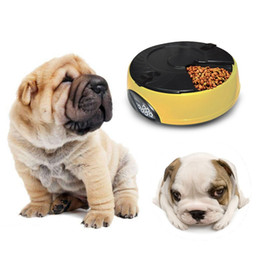 Wholesale indoor timers - 6-meal Automatic Pet Dog Cat Feeder LCD Timer & Voice Recorder Smart Pet Meal Dispenser Hot Selling
