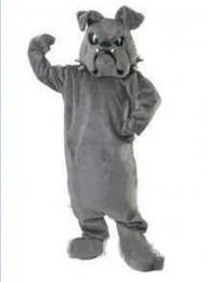 Низкая цена на заказ бульдог Спайк талисман взрослых плюшевые костюм талисмана мультфильм характер костюмы для Хэллоуин костюм от