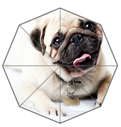 Wholesale dog umbrellas - Friend Birthday Gift Good Quality Umbrella Cute And Funny Pug Dog Paen14 For Kids Portable Foldable Umbrellas Outdoor Umbrella