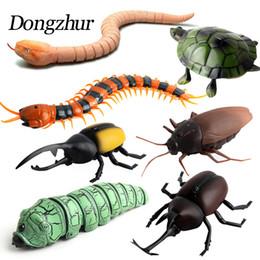 Giocattoli per insetti per bambini online-Giocattoli di bambini di Dongzhur Telecomando infrarosso alta simulazione animale scarafaggio ragno blatta giocattoli di induzione di insetto mischief divertente