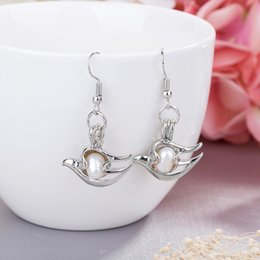 Wholesale Silver Articles Wholesale - high-grade natural oysters pearl cage condole drop earings lover best wish locket silver plated pendant earings for girls adorn article