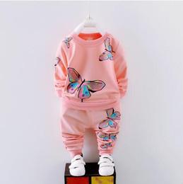 Trajes de bebé de un año online-infantiles para bebés niños y niñas ropa de primavera y otoño de los niños del juego del ocio calentar 1-4 años de edad conjunto 2 juegos