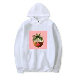 Fleece Pull Over Sweatshirt for Boys Girls Kids Youth Anthurium Unisex Toddler Hoodies