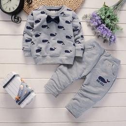 2020 marca de vestuário dolphin Nova Primavera Baby Boy Roupas Set Bow Dolphin Top + Calças 2 Peças Roupas Terno Meninos Cavalheiro Terno 4 s / l desconto marca de vestuário dolphin