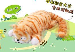 Rolo de brinquedo on-line-Transfronteiriço elétrico gato rolando cat caindo Simulação infantil elétrico brinquedo de pelúcia vai chamar o gato simulação que vai rolar