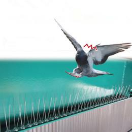 2020 palomas de plastico 2.5M Bird plástico y Pigeon Spikes anti anti de Aves de la paloma de Spike para deshacerse de las palomas y ahuyentar a las aves Control de plagas Y200106 palomas de plastico baratos