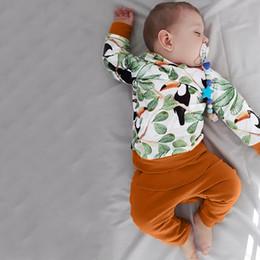 abbigliamento per animali da stampa per animali Sconti Vestiti neonato Set manica lunga Animal Print Top + Pantaloni Abiti Abiti Baby Boys Bambina abbigliamento vetement enfant fille