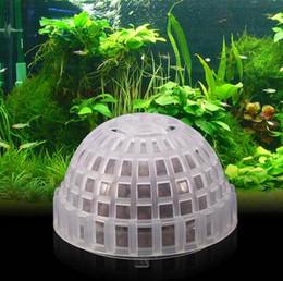 tanque de filtración Rebajas Envío gratis por mayor 2019 5 cm acuario Fish Tank Media Moss Ball Planta viva Filtro Filtración Más reciente decoración Pescado y productos acuáticos