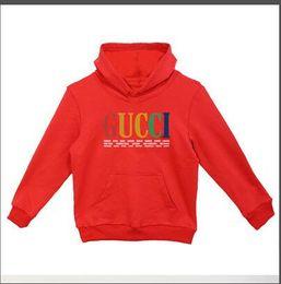 new Kids brand Hoodie Autumn Children Long Sleeve Baby Girls Boys Coat Kids Cotton Tops Sports Casual Tees Sweater